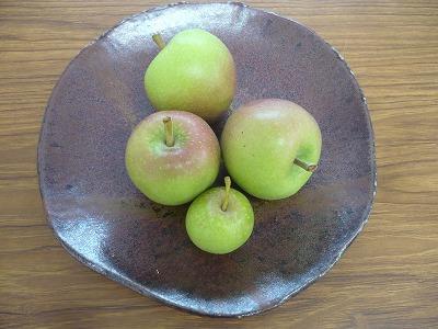 弘前での摘果りんごを飾って